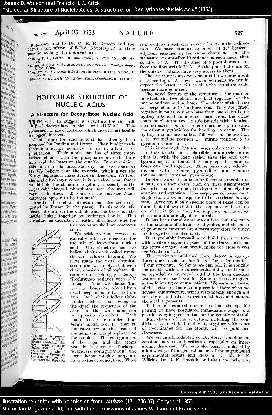 watson and crick dna research paper Genetics and genomics timeline began working informally with the american post-doctorate james watson crick had and research into dna brought.
